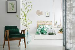 Escuro - cadeira verde no quarto fotos de stock