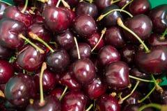 Escuro - cerejas doces maduras frescas do campo vermelho Foto de Stock Royalty Free