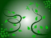 Escuro - esverdeie o fundo floral Foto de Stock Royalty Free