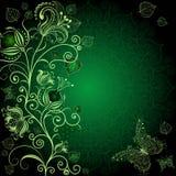 Escuro - frame floral verde Fotografia de Stock