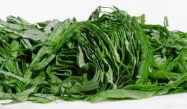 Escuro - vegetais verdes Imagem de Stock