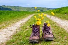 Escursione degli stivali su un modo