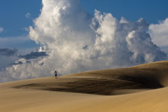 Escursione del deserto fotografia stock