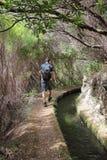 Escursione del Madera Fotografia Stock