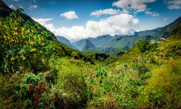 Escursione del Manfatte, più alta montagna della riunione della La Immagini Stock