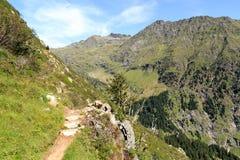 Escursione del panorama delle alpi della montagna e del percorso nel gruppo di Texel, il Tirolo del sud Fotografia Stock Libera da Diritti