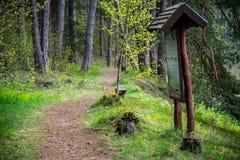 Escursione del percorso immagine stock