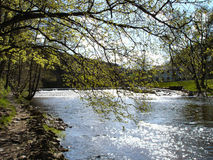 Escursione del percorso al fiume di Zschopau immagine stock