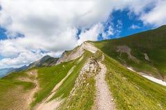 Escursione del percorso su Bernese Oberland Immagine Stock