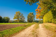 Escursione del percorso su un pomeriggio Tankenberg di ottobre, Oldenzaal, Paesi Bassi fotografie stock libere da diritti