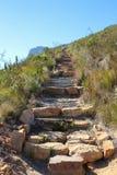 Escursione del percorso sulla montagna della tabella, la Sudafrica Fotografia Stock