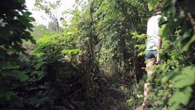 Escursione del trekking della donna nella giungla della foresta pluviale Elevi il punto di vista posteriore di giovane viandante  video d archivio