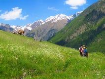 Escursione del trekking di camminata che backpacking nelle alpi italiane Fotografie Stock Libere da Diritti