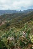 Escursione del viaggio nelle montagne di Anaga vicino a Taborno sull'isola di Tenerife Immagine Stock