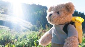 Escursione dell'orsacchiotto Immagine Stock Libera da Diritti