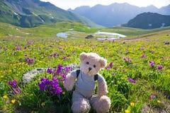 Escursione dell'orsacchiotto Fotografia Stock