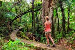 Escursione della donna della giungla Immagini Stock