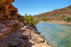 Escursione della traccia del ciclo della finestra delle nature, parco nazionale di kalbarri, Australia occidentale 23 fotografia stock