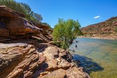 Escursione della traccia del ciclo della finestra delle nature, parco nazionale di kalbarri, Australia occidentale 25 fotografie stock