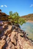 Escursione della traccia del ciclo della finestra delle nature, parco nazionale di kalbarri, Australia occidentale 24 immagini stock