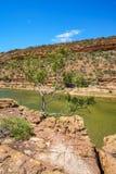 Escursione della traccia del ciclo della finestra delle nature, parco nazionale di kalbarri, Australia occidentale 32 immagine stock libera da diritti
