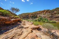 Escursione della traccia del ciclo della finestra delle nature, parco nazionale di kalbarri, Australia occidentale 35 fotografia stock libera da diritti