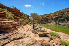 Escursione della traccia del ciclo della finestra delle nature, parco nazionale di kalbarri, Australia occidentale 37 fotografia stock libera da diritti