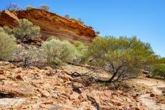 Escursione della traccia del ciclo della finestra delle nature, parco nazionale di kalbarri, Australia occidentale 3 fotografia stock libera da diritti