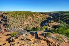 Escursione della traccia del ciclo della finestra delle nature, parco nazionale di kalbarri, Australia occidentale 44 fotografie stock