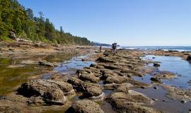 Escursione della traccia della costa ovest Fotografia Stock Libera da Diritti