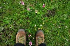 Escursione delle gambe sul pascolo Fotografie Stock Libere da Diritti