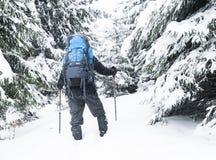 Escursione di inverno Fotografie Stock Libere da Diritti