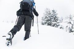 Escursione di inverno Immagini Stock Libere da Diritti