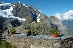 Escursione gli stivali e dei fiori nelle montagne fotografia stock libera da diritti