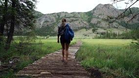 Escursione Turista della donna con lo zaino che cammina su un ponte nelle montagne Avventura in un aumento Vista posteriore archivi video