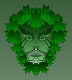 Esdoorn Greenman vector illustratie