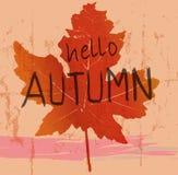 Esdoornblad, de herfstsymbool, vectorillustratie Stock Foto's