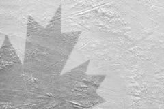 Esdoornblad op ijs stock foto's