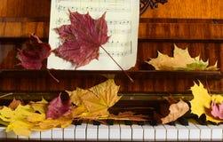Esdoornbladeren op een piano Stock Afbeeldingen