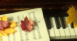 Esdoornbladeren op een piano Stock Afbeelding