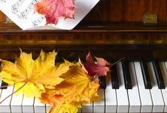 Esdoornbladeren op een piano Stock Foto's
