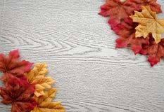 Esdoornbladeren op houten textuur Stock Foto