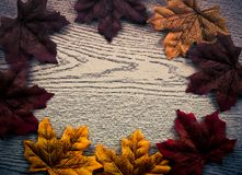 esdoornbladeren op houten textuur in uitstekende stijl Stock Foto's