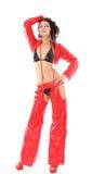 Esecutore sexy di striptease. Immagine Stock