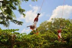 Esecutori dell'acrobata di Voladores agli uomini di volo Fotografia Stock