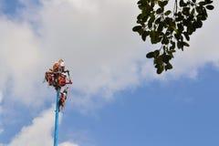 Esecutori dell'acrobata di Voladores agli uomini di volo Immagini Stock Libere da Diritti