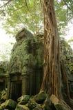 Esecuzioni del tempiale cambogiano antico Fotografie Stock Libere da Diritti