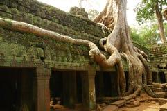 Esecuzioni del tempiale cambogiano antico Fotografia Stock Libera da Diritti