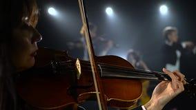 Esegue alla luce di talento della fase del quartetto di concerto solo Fondo nero del fumo Fine in su stock footage