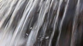 """Eseguendo fiume bulgaro """"Luda Mara """"vicino al breve video treppiede di Petrich"""